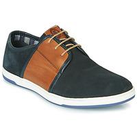 Shoes Men Low top trainers Base London JIVE Blue / Camel