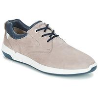 Shoes Men Low top trainers Lloyd ACHILLES Beige