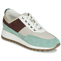 Shoes Women Low top trainers Geox D TABELYA Beige / Brown / Green