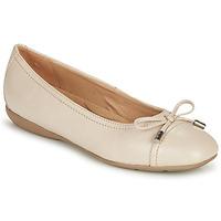 Shoes Women Ballerinas Geox D ANNYTAH Taupe