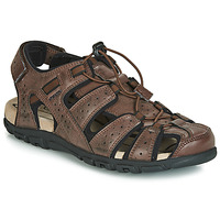 Shoes Men Sports sandals Geox UOMO SANDAL STRADA Brown
