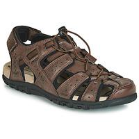 Shoes Men Sports sandals Geox UOMO SANDAL STRADA Brown