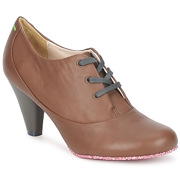 Shoes Women Low boots Terra plana GINGER ANKLE Brown