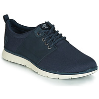 Shoes Men Low top trainers Timberland KILLINGTON L/F OXFORD Blue