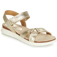 Shoes Women Sandals André ARRY Gold