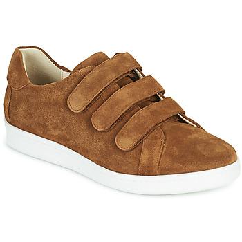 Shoes Men Low top trainers André AVENUE Brown