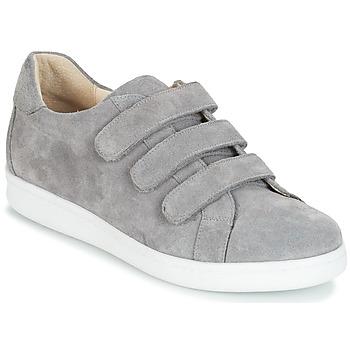Shoes Men Low top trainers André AVENUE Grey