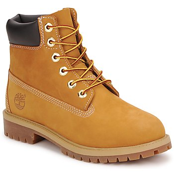 Shoes Boy Mid boots Timberland 6 IN PREMIUM WP BOOT Brown