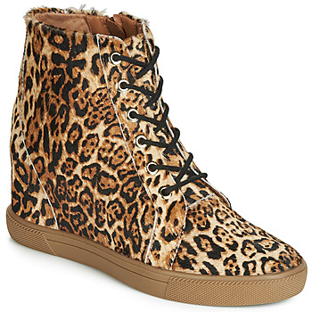 Shoes Women Low boots Cristofoli PONEY JAGUAR Leopard