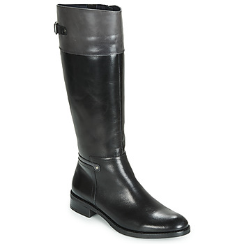 Shoes Women Boots Dorking TIERRA Black / Grey