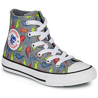 Shoes Boy High top trainers Converse CHUCK TAYLOR ALL STAR DINOVERSE HI Grey