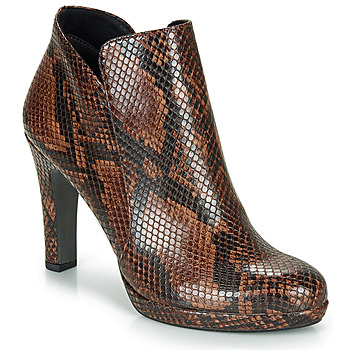 Shoes Women Ankle boots Tamaris LYCORIS Brown / Python