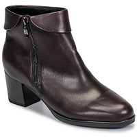 Shoes Women Ankle boots Ara 16913-67 Brown