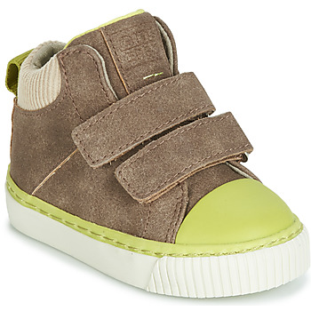Shoes Boy High top trainers Gioseppo ERDING Taupe