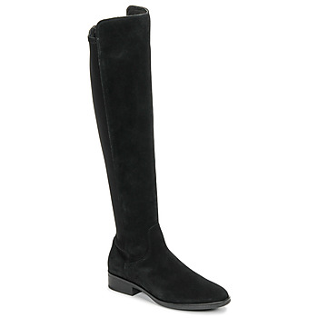 Shoes Women High boots Clarks PURE CADDY Black