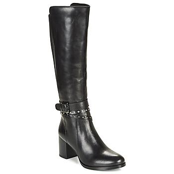 Shoes Women Boots André NAIGE Black