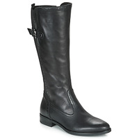 Shoes Women Boots André MAELLE Black