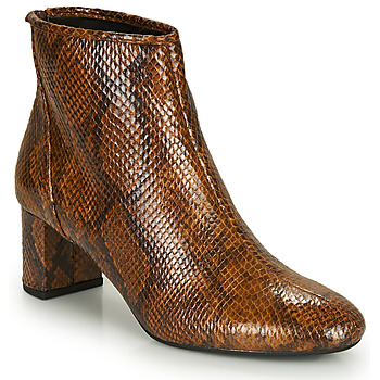 Shoes Women Ankle boots André LEADERS Brown