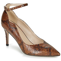 Shoes Women Court shoes André LIDOO Brown