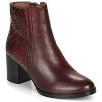 Shoes Women Ankle boots André NILA Bordeaux
