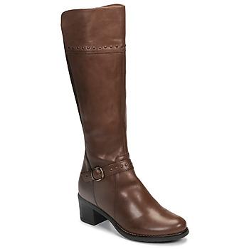 Shoes Women Boots André MANOU Brown