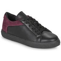 Shoes Women Low top trainers André BAILA Black