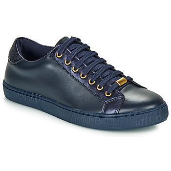 Shoes Women Low top trainers André BERKELEY Blue