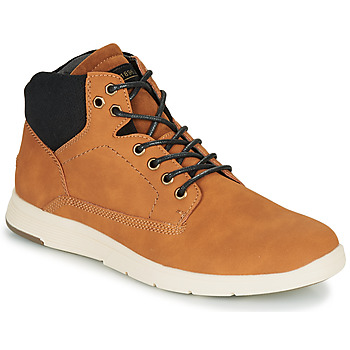 Shoes Men High top trainers André AVONDALE Brown