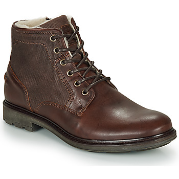 Shoes Men Mid boots André TIGNES Brown