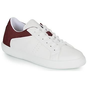 Shoes Men Low top trainers André BIOTONIC White / Bordeaux