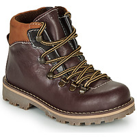 Shoes Boy Mid boots André REMY Brown