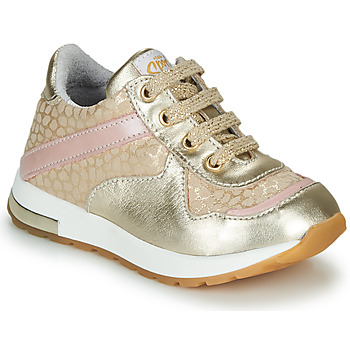 Shoes Girl Low top trainers GBB LELIA Beige / Gold