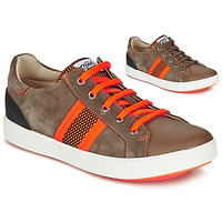 Shoes Boy Low top trainers GBB ANTENO Brown / Orange