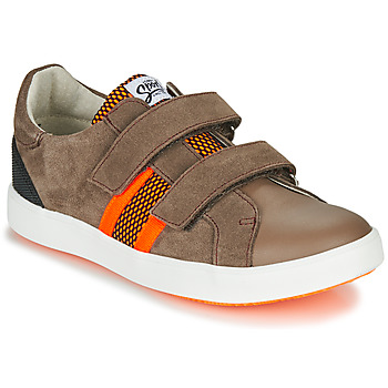 Shoes Boy Low top trainers GBB AVEDON Brown
