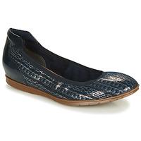 Shoes Women Ballerinas Tamaris  Marine / Silver