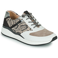 Shoes Women Low top trainers JB Martin 1KALIO White / Beige / Black