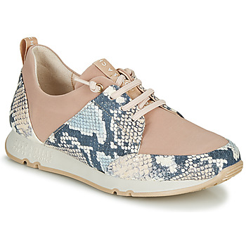 Shoes Women Low top trainers Hispanitas KIOTO Beige / Blue