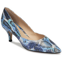 Shoes Women Court shoes Perlato MOLI Blue