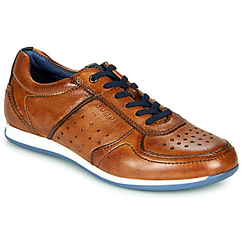 Shoes Men Low top trainers Bugatti TOMEO Brown