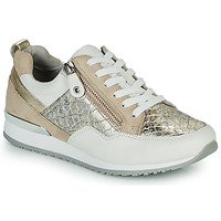 Shoes Women Low top trainers Caprice BOSKA Gold / Beige