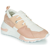 Shoes Women Low top trainers Steve Madden CLIFF Pink