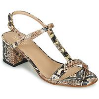 Shoes Women Sandals André BERMUDES Beige