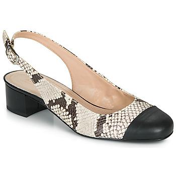 Shoes Women Ballerinas André POEMETTE Beige