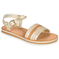 Shoes Girl Sandals Clarks FINCH STRIDE K Silver / Brown