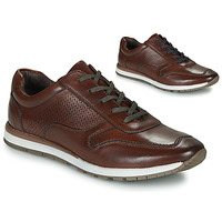 Shoes Men Low top trainers André SPORTCHIC Brown