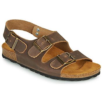 Shoes Boy Sandals André ILAN Brown