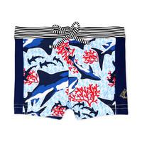 material Boy Trunks / Swim shorts Petit Bateau FEUILLAGE Multicolour