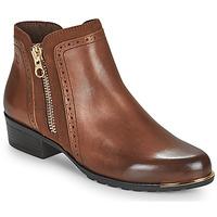 Shoes Women Mid boots Caprice  Cognac