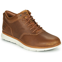 Shoes Men Low top trainers Timberland KILLINGTON HALF CAB Brown