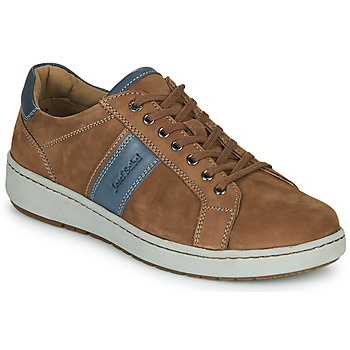Shoes Men Low top trainers Josef Seibel DAVID 01 Brown